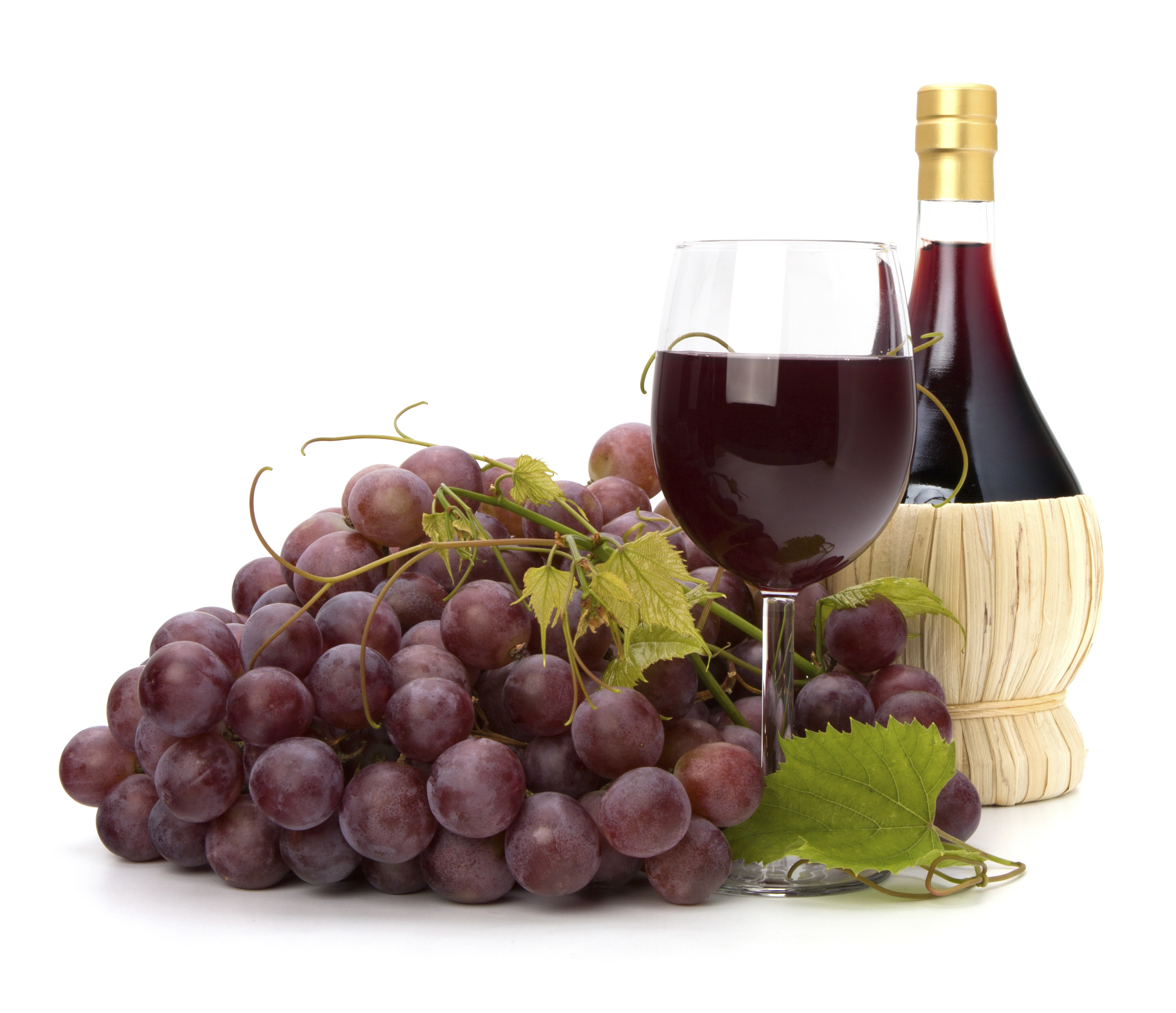 Compound found in grapes, red wine may help prevent memory ...