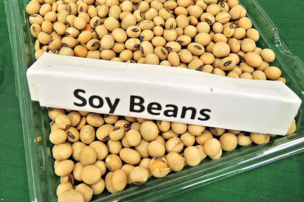 Soy can hide in a lot of common ingredients
