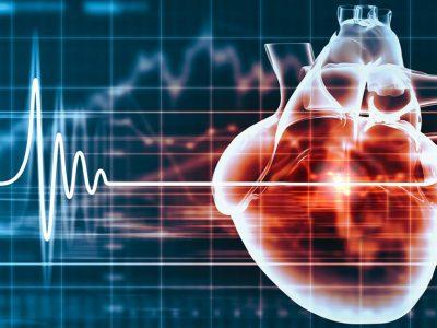stylized image of a heart