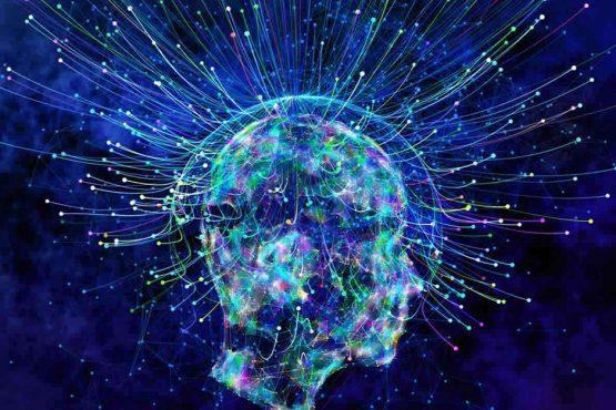 Decorative image of the brain