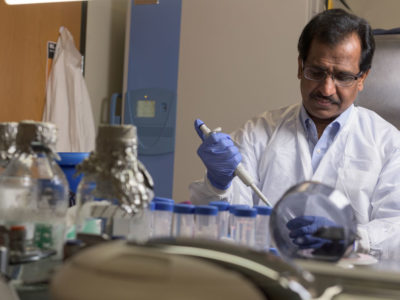 Ashok Shetty working in his laboratory