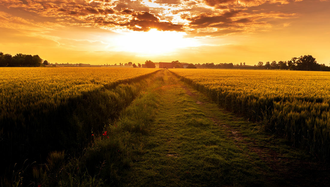photo of sunset over a field looking onto a small town
